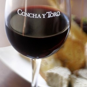 Concha wine brands booming in UK | Grande Passione | Scoop.it