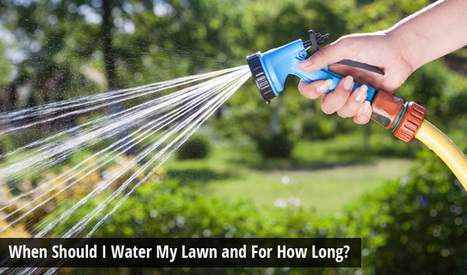 When Should I Water My Lawn and For How Long? | Turfrain | Turfrain | Scoop.it