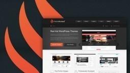 ThemeFurnace - Get 50% Off on All WordPress Themes | Free & Premium WordPress Themes | Scoop.it
