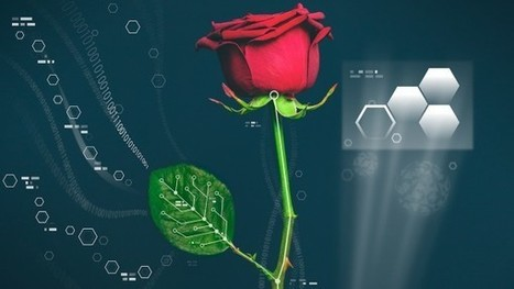 In electrifying advance, researchers create circuit within living plants | Messenger for mother Earth | Scoop.it