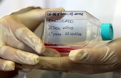 Mystery Zika case in Utah was likely spread through sweat or tears | Sustain Our Earth | Scoop.it