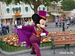How to travel From CDG to Disneyland | Charles de gaulle to disneyland transfers | Scoop.it