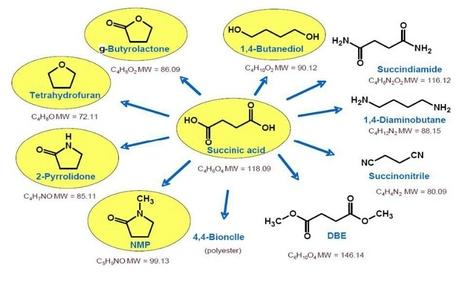 Succinic Acid Market worth $496.0 Million by 2016 | Biorenewable Chemicals & Plastics | Scoop.it