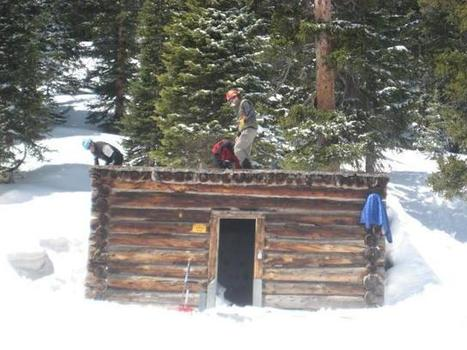 Solution found for dead cows stuck in mountain cabin | Strange days indeed... | Scoop.it