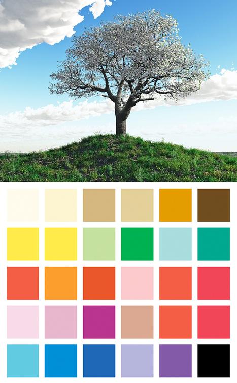 Mademoiselle Grenade - Les couleurs : la méthode saisonnière. | Capital-image | Scoop.it