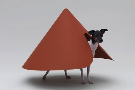 Architecture for Dogs offers customizable designer pet homes | Japan Picks | Scoop.it