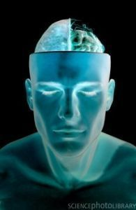 Can the Subconcious Mind Alert Us to the Future? | Psych Central ... | Neuroscience and the unconcious mind | Scoop.it