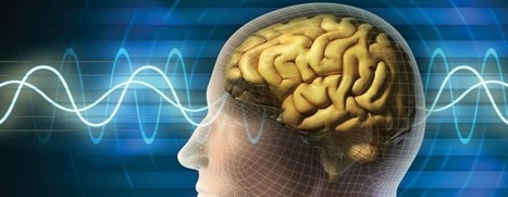 Cognitive Skills Improved By Playing PC Game | Tech and Facts | Scoop.it