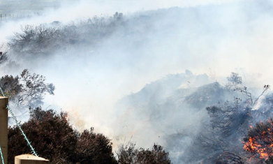 National Farmers' Union issues grass fires warning as hot weather continues | Food issues | Scoop.it