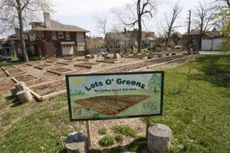 Detroit leads the way in urban farming   Vertical Farm - Food Factory   Scoop.it