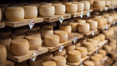 Cheese Makes You Tall: Just ask the Dutch | Criminology and Economic Theory | Scoop.it