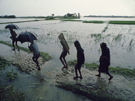monsoon | Year 7 Geography: Monsoons | Scoop.it