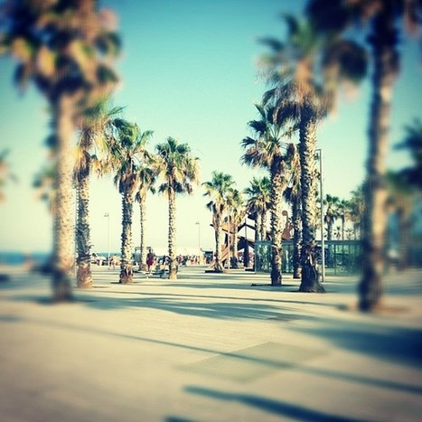Enjoy a Beach Tour in Barcelona with Tipzity | Barcelona Tipzity | Scoop.it