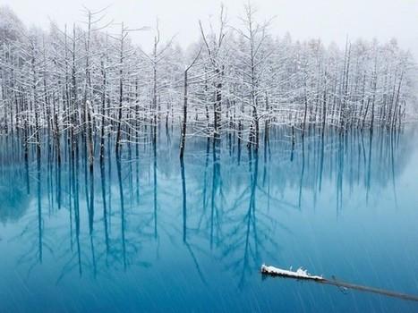 Le lac bleu de Hokkaido | Bio3D | Scoop.it
