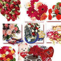 Flowers Delivery in Hapur - Send Flowers to Hapur | Florist in Hapur | florist in delhi | Scoop.it