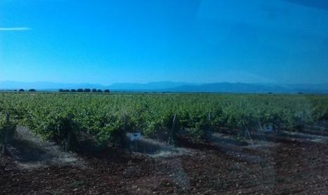 Actualités viti-vinicoles : l'Espagne, grande nation du vin (Me Michel Desilets Villefranche sur Saône) : LYON SAVEURS | Route des vins | Scoop.it