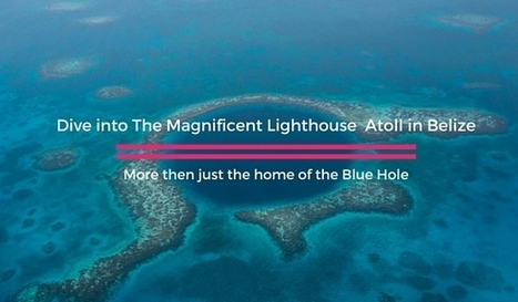 Visit the Lighthouse Atoll in Belize to Dive the Amazing Coral Reefs | Bookyourdive | Scoop.it