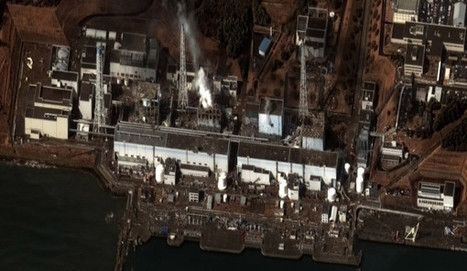 All The Best, Scientifically Verified, Information on Fukushima Impacts - Deep-Sea News | Fukushima Emergency What can We do | Scoop.it