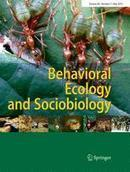 Flexibility of collective decision making during house hunting in Temnothorax ants - Springer | Social Foraging | Scoop.it