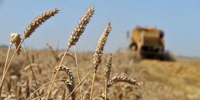 Evolution préoccupante de l'agriculture européenne | Questions de développement ... | Scoop.it