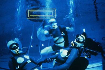 Redolfi ~ Musique Subaquatique ~ Underwater Music | DESARTSONNANTS - CRÉATION SONORE ET ENVIRONNEMENT - ENVIRONMENTAL SOUND ART - PAYSAGES ET ECOLOGIE SONORE | Scoop.it