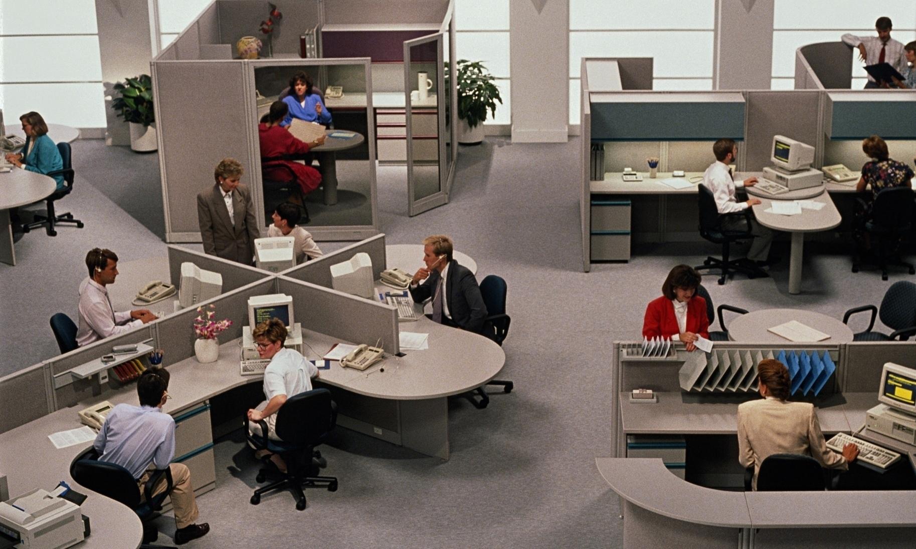 Сес в офисе 3 фотография