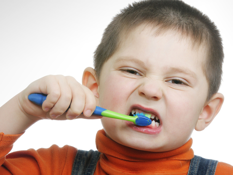 How dirty is your toothbrush? Answer: Not as much as you think | Radio Show Contents | Scoop.it