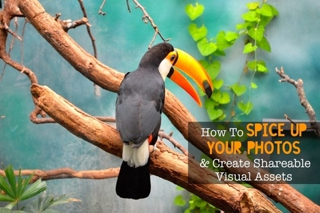 9 Steps To Spice Up Your Photos And Create Shareable Visual Assets | Public Relations & Social Media Insight | Scoop.it