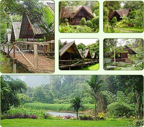 Khao Sok Riverside Cottage | Vacation ASEAN | Scoop.it