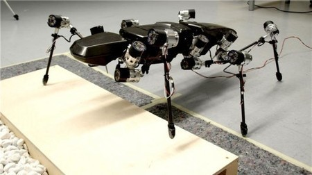 Hector the stick insect-inspired robot takes its first steps | Science, Technology, and Current Futurism | Scoop.it