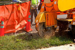 Reliable tree service by Rick Lees Stump Removal | Rick Lee's Tree Stump Removal | Scoop.it