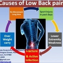Causes of Low Back pain | Acupuncturist In Morristown, Acupuncture In Morristown | Scoop.it