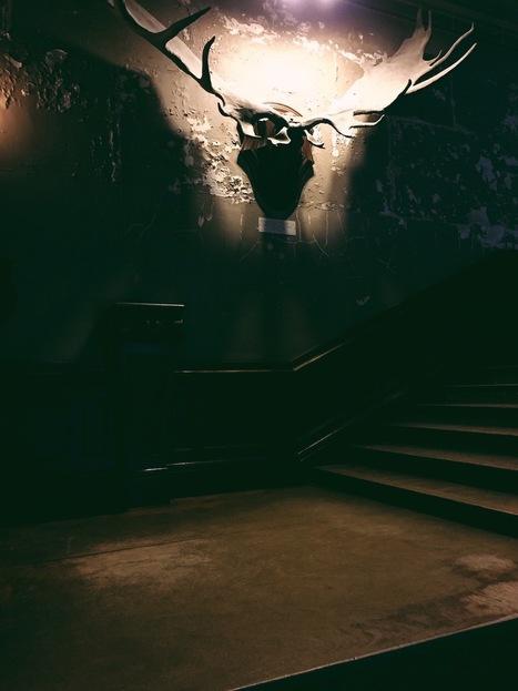 A Giant Cabinet of Curiosities in Paris | DiverSync | Scoop.it