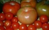 Salsa de Tomate Clásica   Recetas mías   Scoop.it