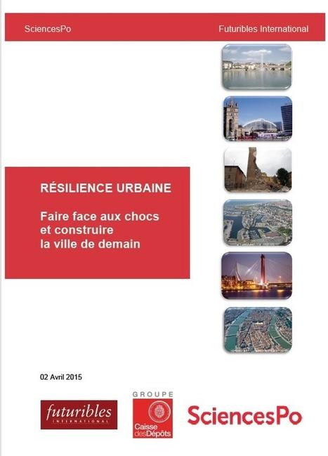 Résilience urbaine. Faire face aux chocs et construire la ville de demain   Urbanisme   Scoop.it