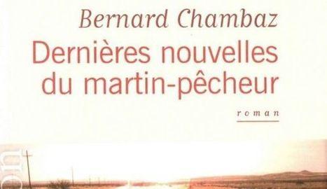 Bernard Chambaz: les oiseaux se cachent pour mourir | Vive la photographie | Scoop.it