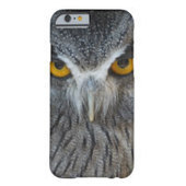 Welcome to Animal Cognizance: Owl iPhone 6 Cases | iPhone Cases | Scoop.it