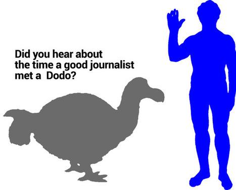 Didn't You Hear? Good Journalism is Dead!   GooglePlus Expertise   Scoop.it
