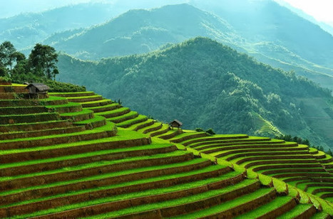 Home - sapatrekkingtours | Vietnam Holiday Packages | Scoop.it