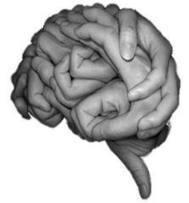 Gimnasia cerebral. Gimnasia Mental.   la vida   Scoop.it