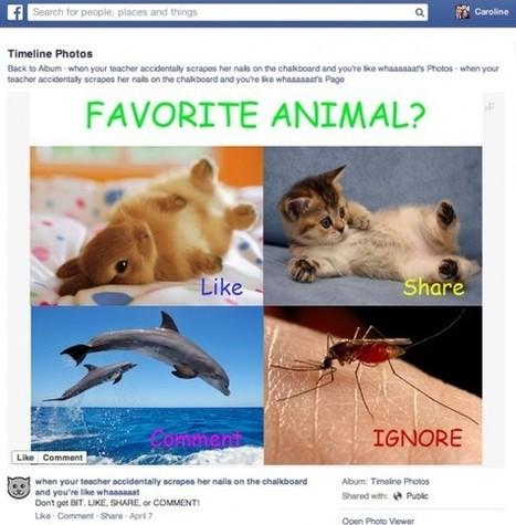 Changement Algorithme Facebook : Sanction pour les Demandes de J'aime | Emarketinglicious | Réseaux sociaux | Scoop.it