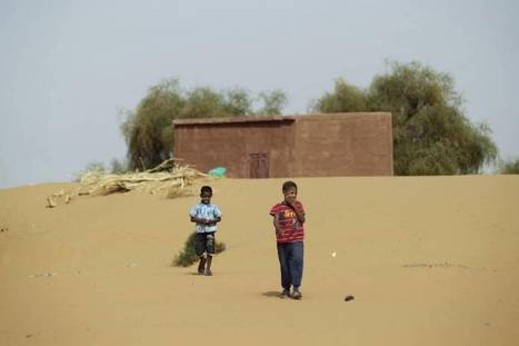 Sahel countries in race against time to regreen Africa's spreading desert | Sustain Our Earth | Scoop.it
