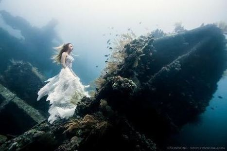 Models Pose With Shipwreck Underwater, The Results Are Seriously Stunning | The Web Things | Scoop.it