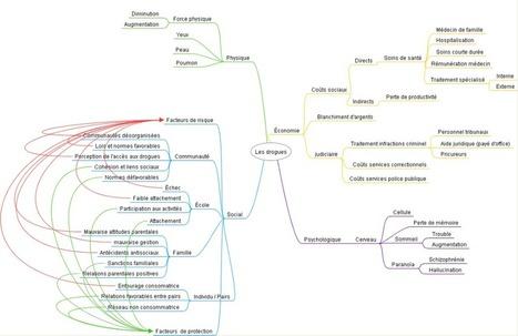 Cartes conceptuelles [Sic] en Accueil et intégration | Cartes mentales | Scoop.it