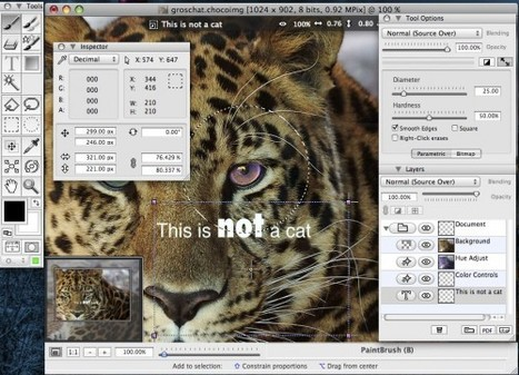 Open Source Alternatives To Photoshop | Virtual World Content Creation | Scoop.it