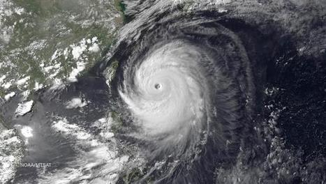 Typhoon Neoguri sweeps across Japan's southern Okinawa islands | RYUKYU - OKINAWA | Scoop.it