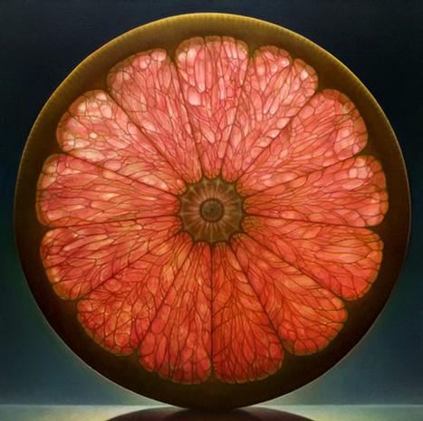 Grapefruit Cross Section & Light | Harmony Nature | Scoop.it