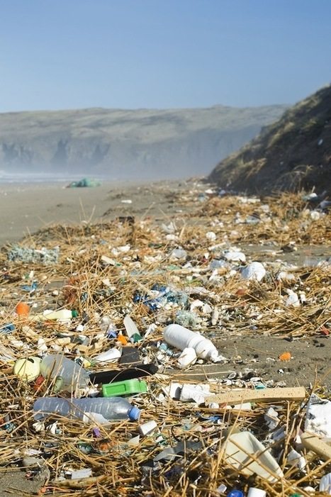 Tideline of Marine Trash Cleared By Army of Volunteers - SurfGirl Magazine - Womens and Girls Surfing, Surf Fashion, Surf News, Surf Videos | Redcar Beach Action Group | Scoop.it