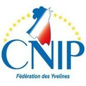 Philippe Brillault, Maire du Chesnay et Conseiller général des Yvelines, rejoint le CNIP - Les fédérations du CNIP - Le Centre National des Indépendants et Paysans | Pierre-André Fontaine | Scoop.it