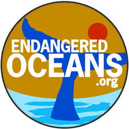 Protect Corals, Fish and Whales From Ocean Acidification | Conservation, Ecology, Environment and Green News | Scoop.it